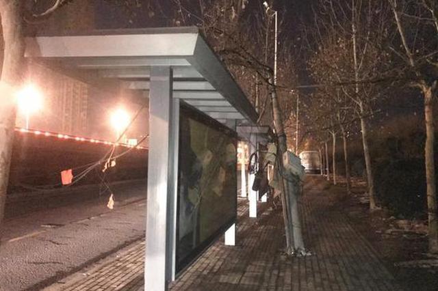 电线杆凌晨倒地多危险 郑州城管彻夜守候保平安