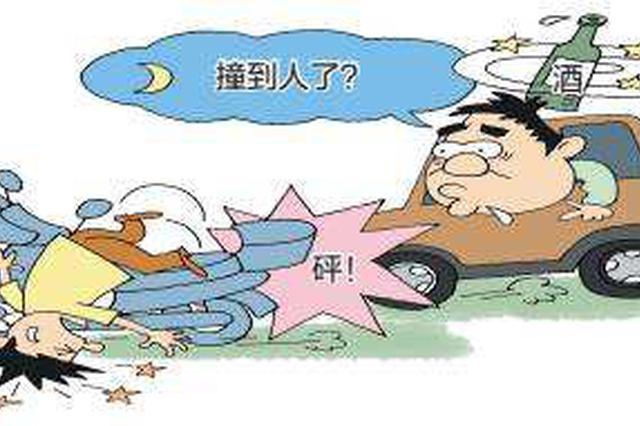 周口老人酒驾撞死人让女婿顶包 帮作伪证的全落网