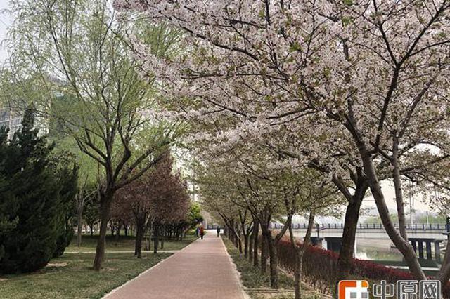 """郑州满城春色浓 绿道上""""串""""起的幸福慢生活"""
