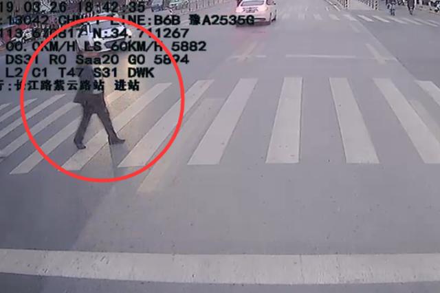 """郑州公交车长礼让斑马线 路人以 """"军礼""""回敬"""