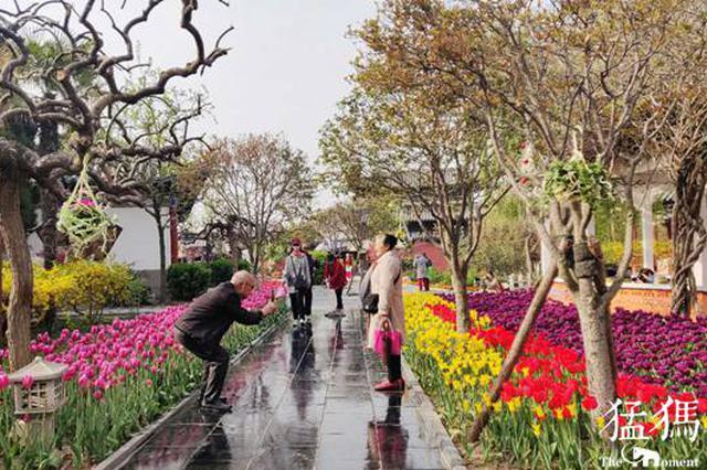"""清明假期""""雨歇歇"""" 河南天气晴好最高气温29℃"""