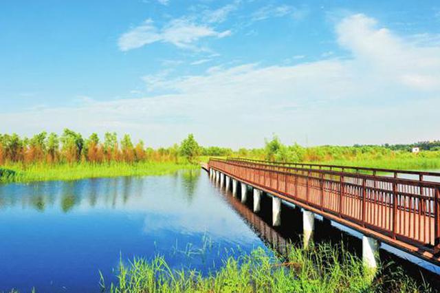 来玩吧!郑州这10个森林(湿地)公园国庆节正式开园