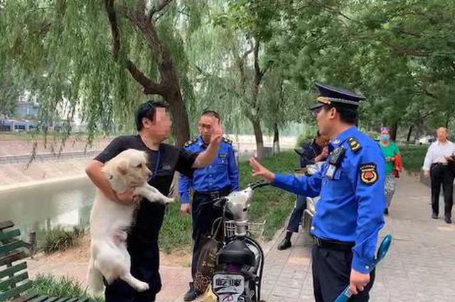 郑州大妈遛狗不办证不打疫苗 反抗执法还咬伤城管
