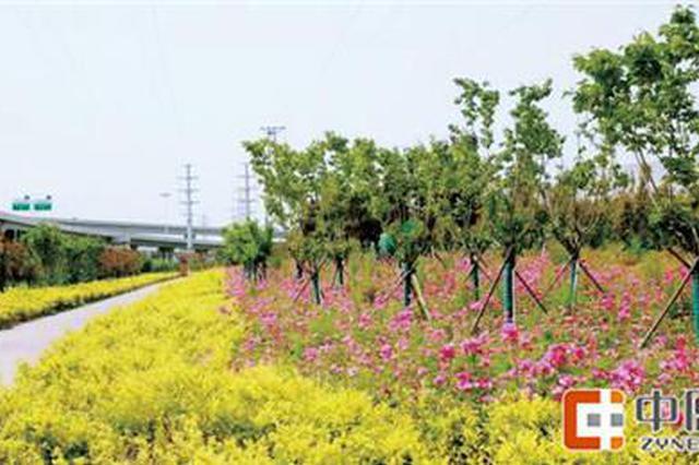 有公园、休闲驿站 郑州经开区打造多功能绿道系统