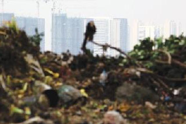 日产垃圾6500吨去哪儿了 追踪郑州生活垃圾处置全过程
