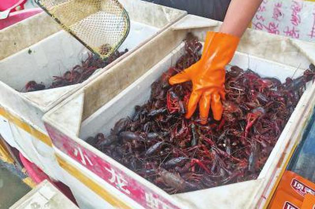 今夏鄭州小龍蝦價格每斤比去年低5到10元 咋回事?