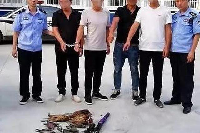 南阳淅川交警查处一起盗猎案 4人非法盗猎被刑拘