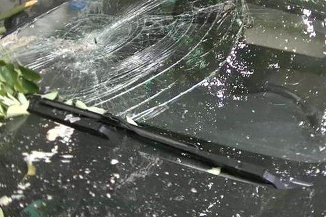 郑州一工地塔吊出错掉落水泥 直接砸穿隔壁墙下轿车