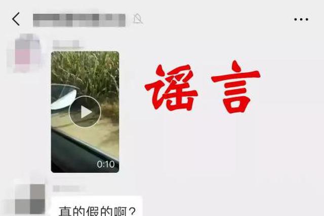 """男子发视频谎称""""金钱豹在河南南乐出没"""" 已被行拘"""