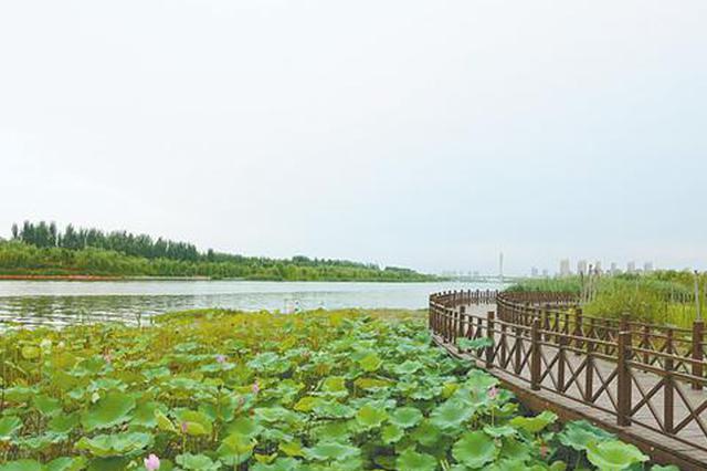 今年5月 郑州全面建成贾鲁河综合治理生态修复工程