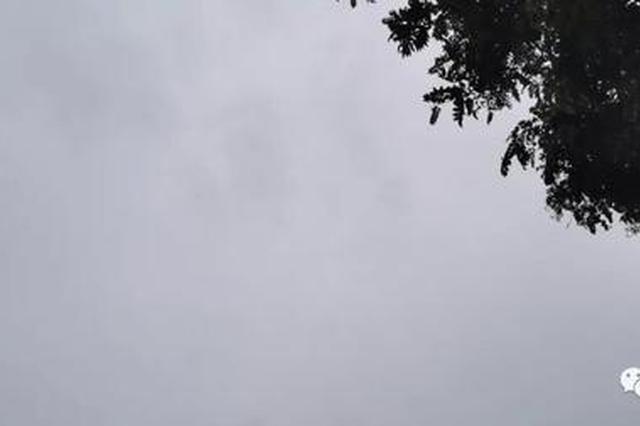 """河南雨雨雨+5级大风+降温=湿冷""""三连击"""""""