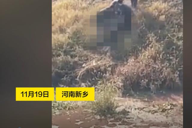 新乡一河中发现尸体 周边村民:死者生前爱喝酒