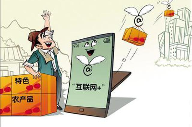 河南农村经济社会发展报告:3.3万户农民网上卖农产品