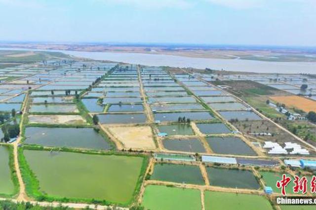 黄河委:2025年前基本控制下游游荡性河势