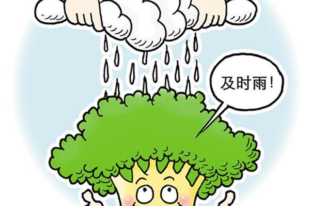 郑州实力挺企:房租减免、贷款支持、税费减免、运营补贴