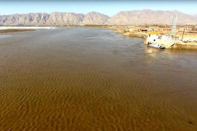 河南加强黄河生态廊道建设 今年计划造林289万亩