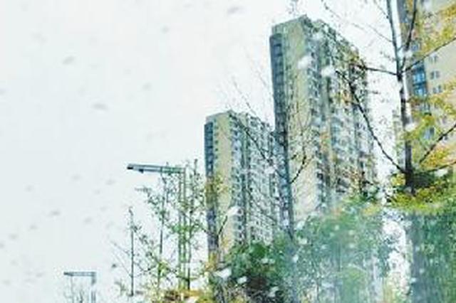 春雨贵如油!今日郑州市出现小到中雨天气