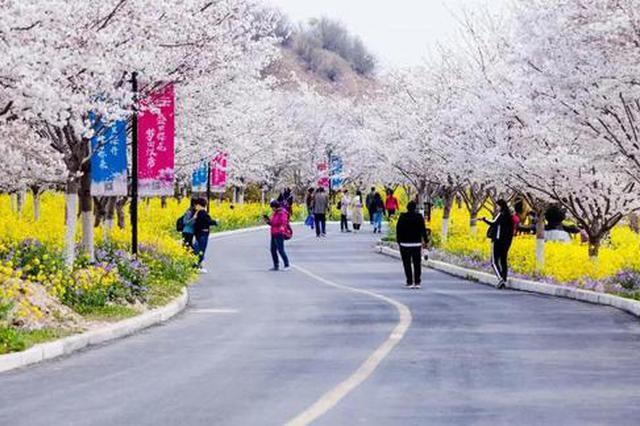 来了!2020河南春季最全赏花地图,请查收!