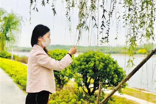 """岸青水绿 飞鸟轻舞 郑州贾鲁河变身城市""""绿腰带"""""""