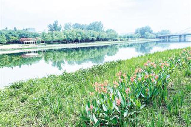 """有花有绿有景观 郑州这儿有座 """"水生植物大观园"""""""