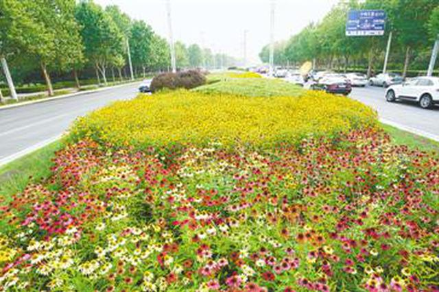 郑州:满城绿意盎然 一路繁花相送