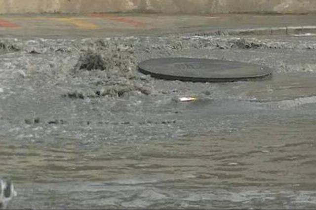大量污水灌入桥洞眼看被淹 他们跳进臭水徒手抓起垃圾