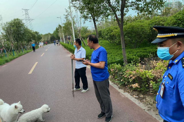 """遛狗未栓绳被处罚 郑州城管:养犬不能""""随心所欲"""""""