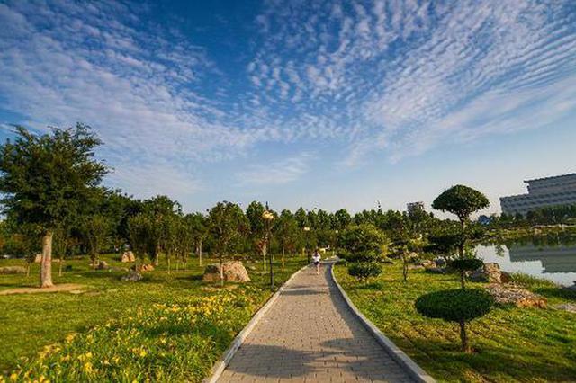 河南:3年内将建145个森林康养基地