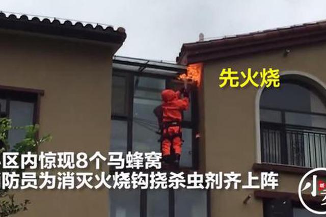 商丘小区内惊现8个马蜂窝 消防灭蜂火烧钩挠齐上阵