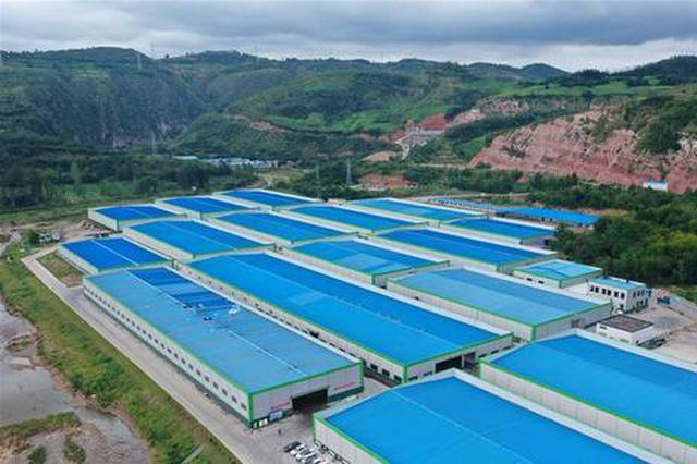 河南卢氏:香菇撑起大产业