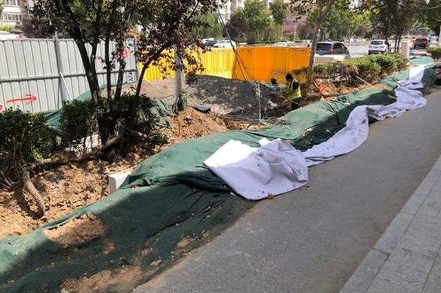 郑州城管部门将对绿植死株、围挡破损等问题进行整治