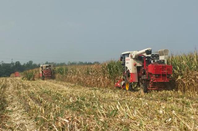 郑州组织30万台农机具投入三秋生产
