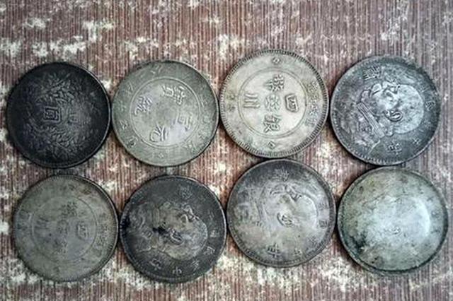 郑州路中捡到一只小布袋 竟装有8块银元和一株灵芝