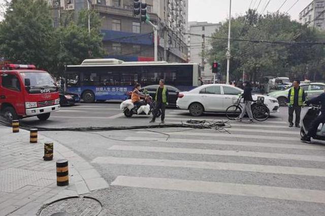 危险!郑州闹市电缆引燃树木 消防紧急灭火