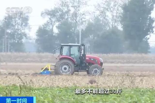 河南省秋季作物收获已近9成 各地秋播小麦陆续展开