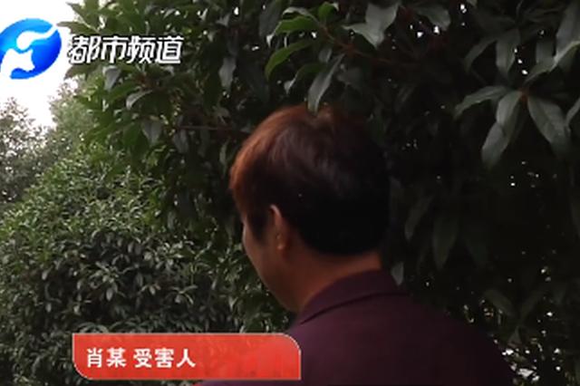 漯河老汉忘年恋被骗致妻服毒:她比俺老婆年轻有魅力