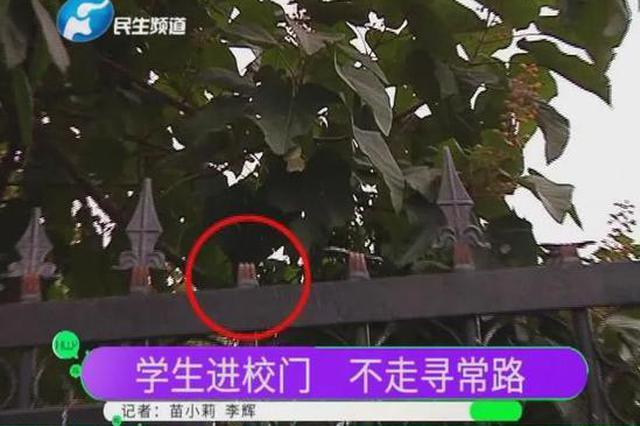翻墙、钻铁皮……郑州一高校学生进出学校不走寻常路