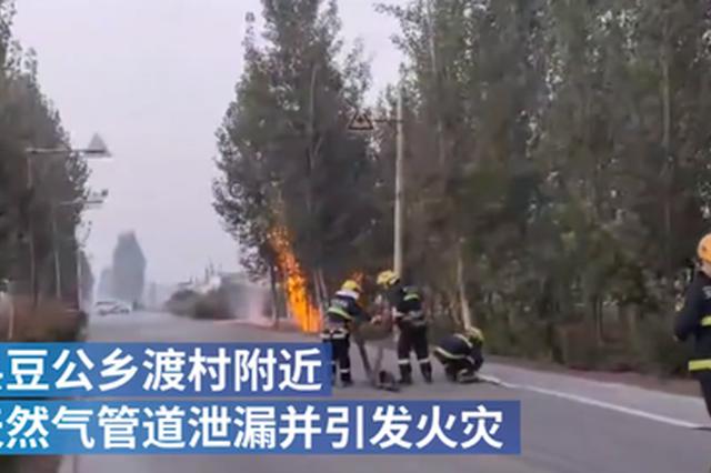 """安阳村庄天然气管道泄漏引发火灾 两条""""火龙""""拔地起"""