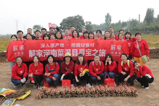 """深入原产地挖掘好食材 解家河南菜""""山药小分队""""走进温县的垆土地"""