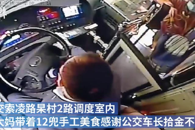 郑州公交车长帮找回小推车 大妈带12兜美食感谢