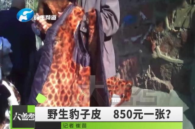 当街贩卖野生动物皮毛引围观 被问是否违法回应惊呆众人