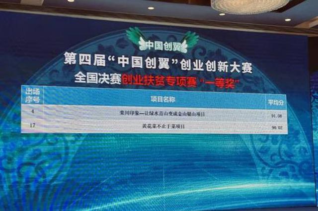 厉害了!河南在全国创业创新大赛中斩获5项殊荣!