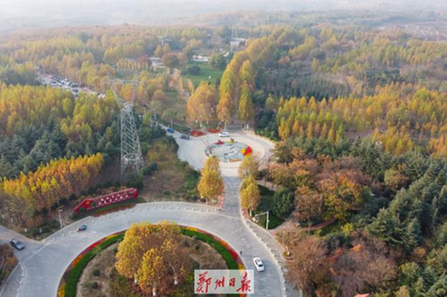 太美!郑州树木园初冬景迷人(图)