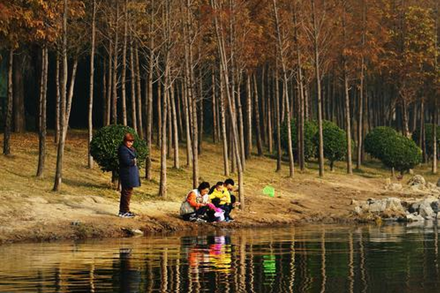 郑州北龙湖湿地公园初冬游记(图)