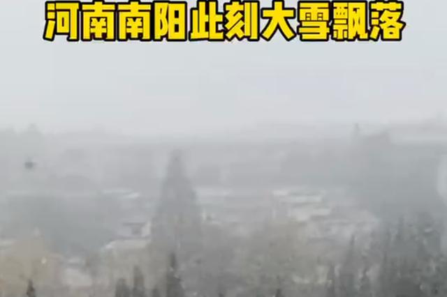 河南南阳大雪飘落 今天你那里下雪了吗?