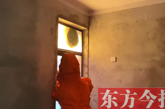 巨型蜂窝困扰居民 商丘消防员摘除解民忧