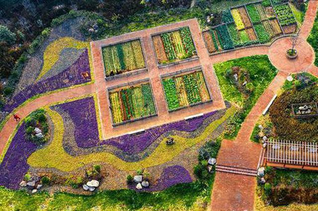河南郏县:恬静美丽的王家庄