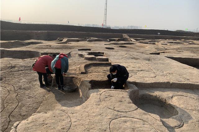 """距今近4000年!周口时庄村发现中国最早""""粮食城邑"""""""