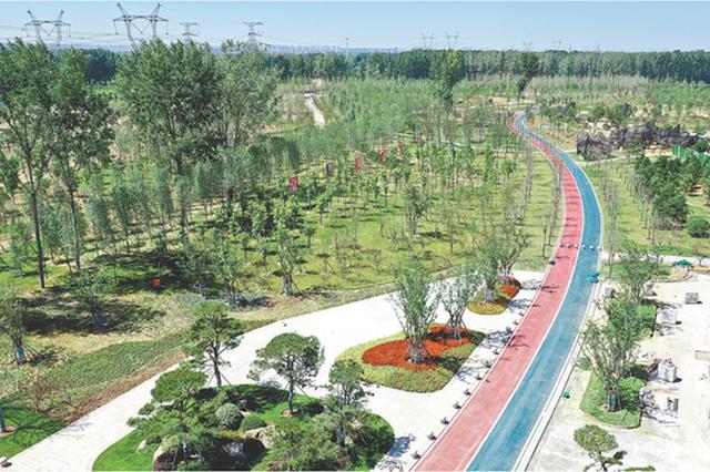 河南今年建成黄河生态廊道120公里 四水同治任务完成