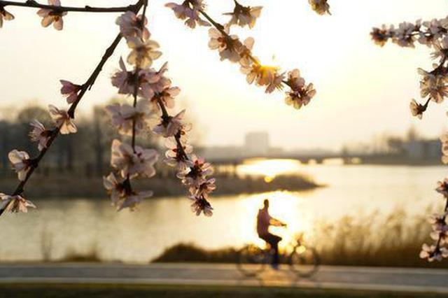 郑州:龙子湖畔春光好(图)